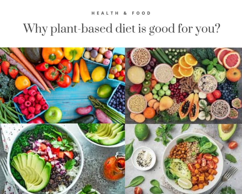 Health and Food. Plant-based diet.